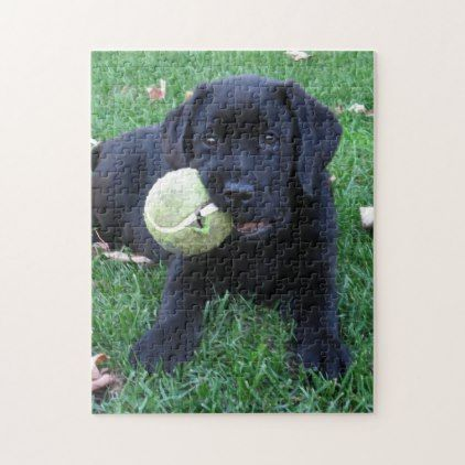 Black Labrador Puppy - Play Ball Jigsaw Puzzle  $24.00  by BlackDogArtJudy  - cyo diy customize personalize unique