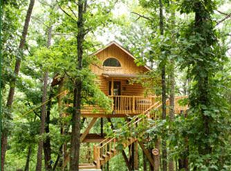 Treehouse Cabins Eureka Springs, Arkansas