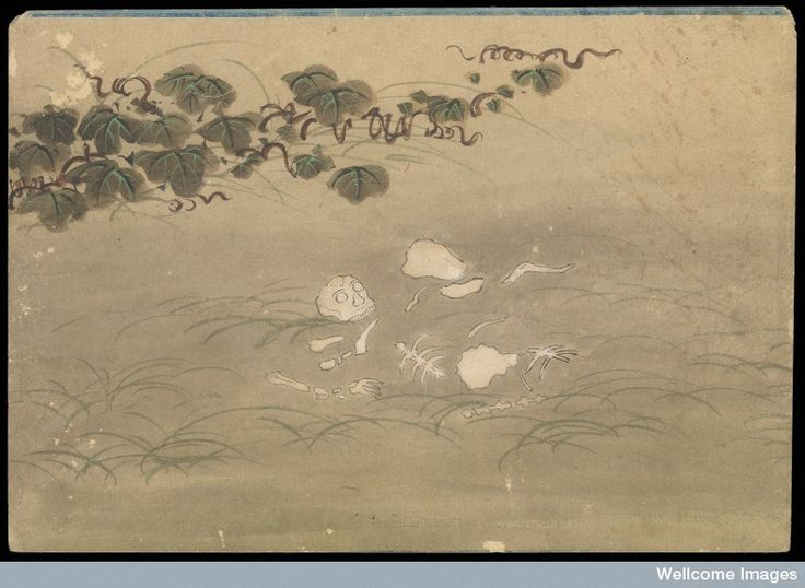 Kusozu: the death of a noble lady and the decay of her body, panel 8 of 9 The body has completely skeletonized and many of the bones have been scattered or carried away by unseen scavengers. Image Credit: Wellcome Collection