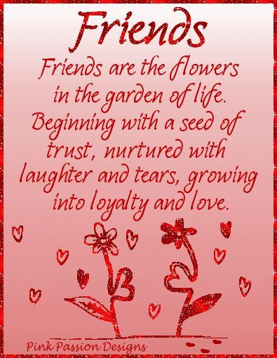 Decent Image Scraps: Friendship Quote