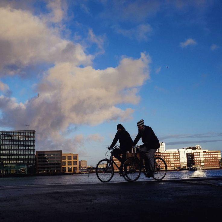 Cyklister på Islands Brygge. Copenhagen. (Eugene Buzuk)