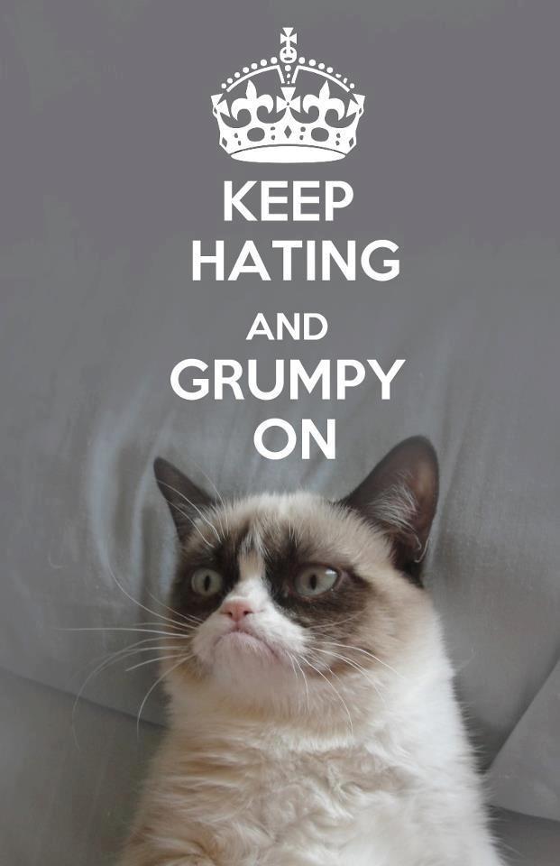 17 Best images about Grumpy Cat on Pinterest   Quokka ...