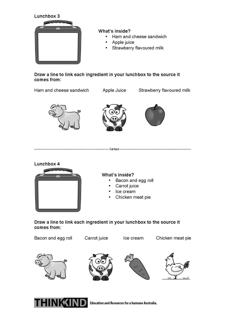 """2/2 """"What's in your lunchbox?"""" Paddock to Plate Worksheet (NSW Early Stage 1 and Stage 1). Follow the link to find the corresponding lesson plan and teaching resource."""