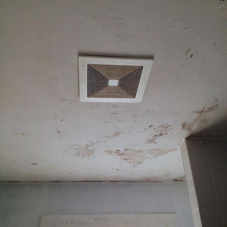 Bathroom Ceiling Mold Removal syracuseny moldtesting