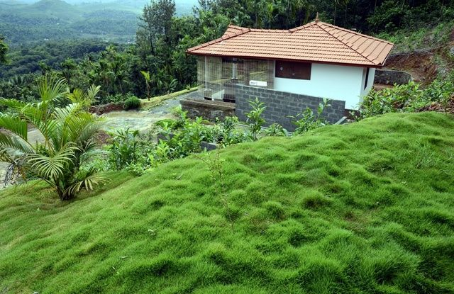 Located in natural beauty of the God's own country, Misty Haven is four star #hotelsinwayanad surrounded by lush greenery. It caters unforgettable holiday experience with the highest level of satisfaction to the traveler. #keraladiaries #travel #nature