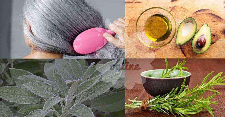 Fantástico! 4 receitas que vão escurecer o seu cabelo sem químicos! - # #abacate #alecrim #camomila #pintarocabeloemcasa #TinturaCaseira