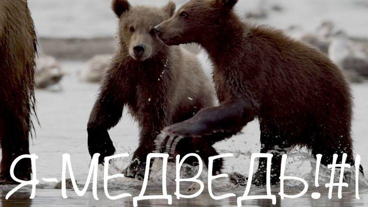 Что за шубки у зверят? //Я - медведь!#1//Природа для самых маленьких.