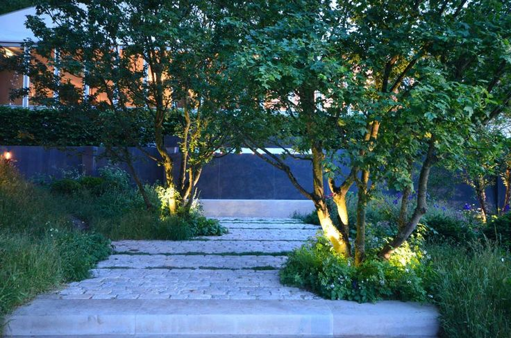 Gold Medal winning garden at RHS Chelsea 2014 | Charlotte Rowe Garden Design
