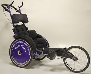 Adaptive Star The Purple Peanut, (Marathon duwrolstoel, Passive Marathon Wheelchair)