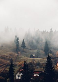 Best 25 Outdoor Photo Props Ideas On Pinterest