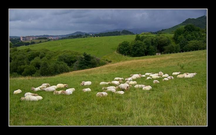 Los campos ......con una tormenta acechando....