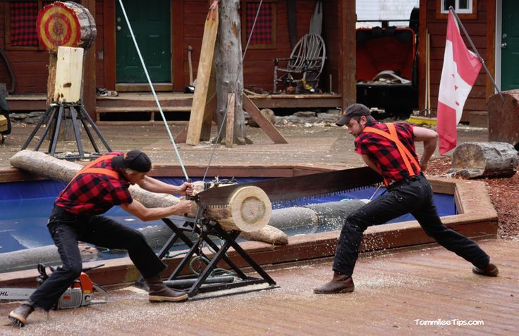 Blog post at Tammilee Tips : While we were on our Alaska Cruise we decided to take in the Great Alaskan Lumberjack Show in Ketchikan  The Great Alaskan Lumberjack Show[..]