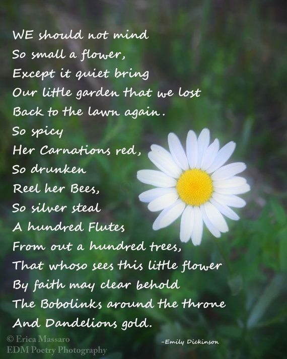 Poem On Beauty Of Nature In English