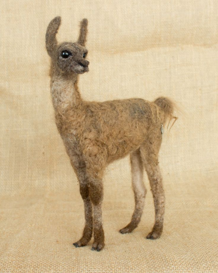Percy the Llama Cria: Needle felted animal sculpture by The Woolen Wagon