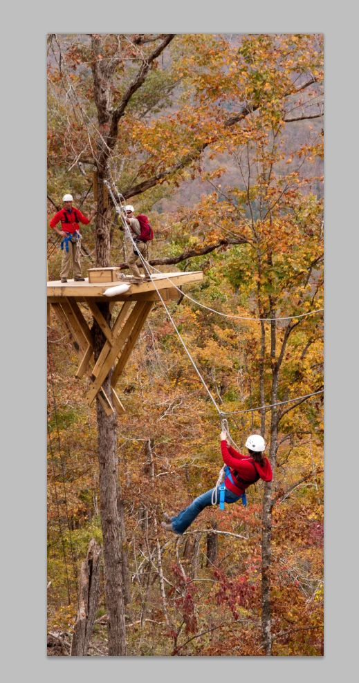 Zip Line Canopy Tour | Buffalo National River Cabins & Canoeing in Beautiful Ponca, Arkansas