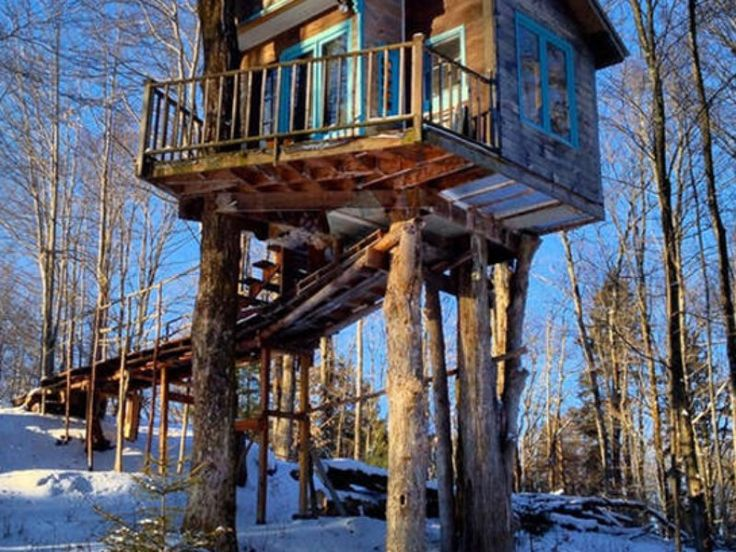 Tiny Fern Forest Treehouse