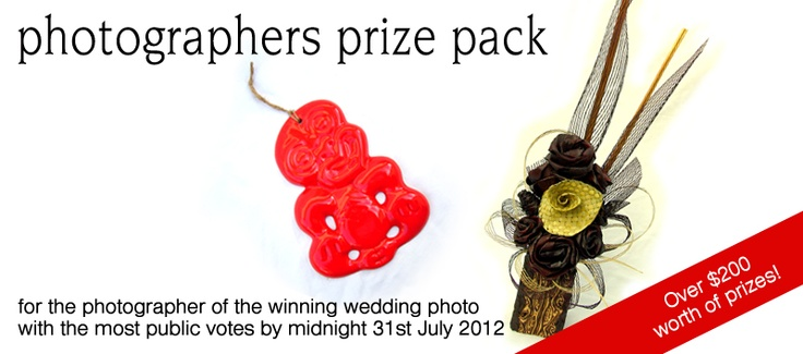 Photographer prize for the Wedding Photo with the most public votes by midnight 31st of July 2012