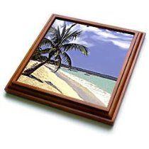Tropical Island - Tropical Paradise - Trivets