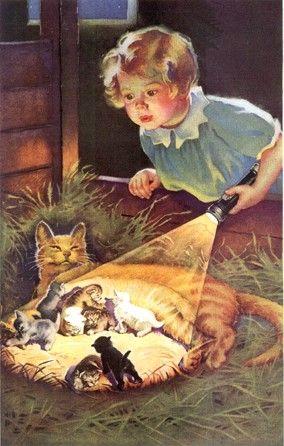 a new litter of kittens!                                                       …
