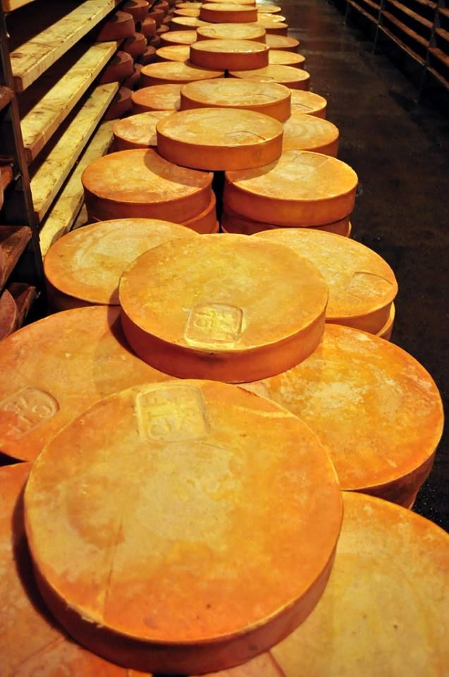 Fontina Cheese, it is made only in Valle d'Aosta, Italy