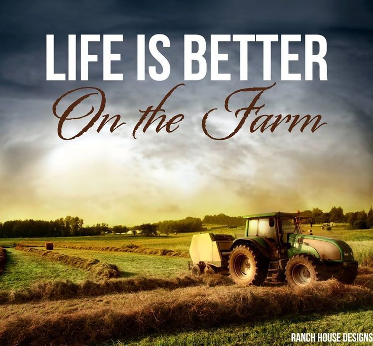 Life is Better on the Farm - Ranch House Designs Livestock ...