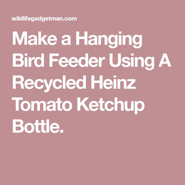 Make a Hanging Bird Feeder Using A Recycled Heinz Tomato Ketchup Bottle.