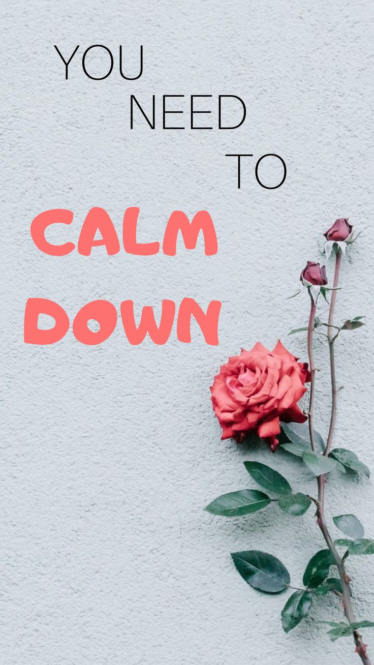 You Need To Calm Down New Single By Taylor Swift From Her New