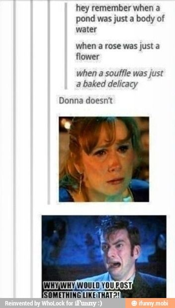 I'm still furious about Ten taking Donna's memory without a discussion and without her consent. I liked Ten well enough until that moment. After that, in all the 2009 specials, he was an ass and I couldn't stand him.