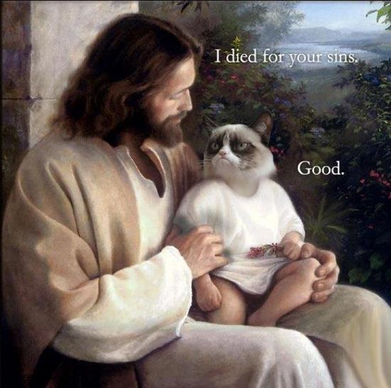sinned for you, jesus with mean cat - Google Search