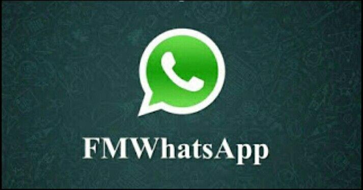31++ Fmwhatsapp for iphone ideas