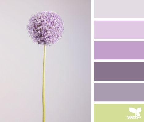 Flora Tones - http://design-seeds.com/index.php/home/entry/flora-tones19