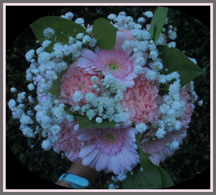 Pale pink carnation and germini hand tie with gypsophila