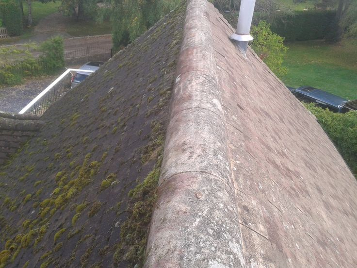 Roof cleaning without pressure washing.  Forget Roof Cleaning by Jet Washing – Try This Method Instead