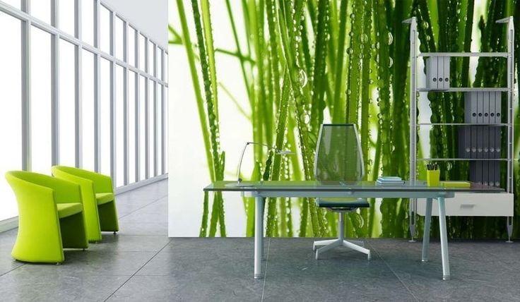 Arredamento ufficio moderno - Parete ufficio verde natura
