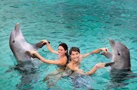 Com os golfinhos