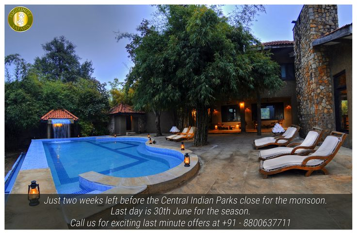 Just two weeks left before the Central Indian Parks close for the monsoon. Last day is 30th June for the season. Call us for exciting last minute offers at +91 - 8800637711 or Email us at sales@pugdundeesafaris.com ‪#‎bandhavgarh‬