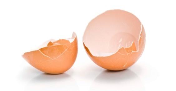 mosaico con guscio d'uovo