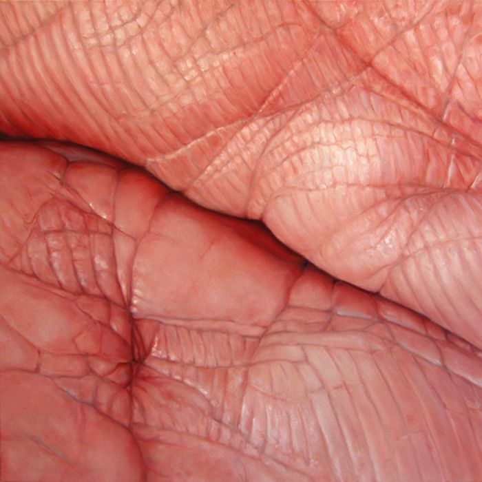 Edie Nadelhaft / Flesh (series of oil paintings to explore a human's biological surfaces