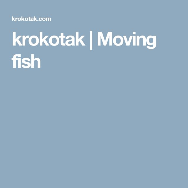 krokotak | Moving fish