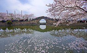 Wuxi Taihu lake Changchun bridge.jpg