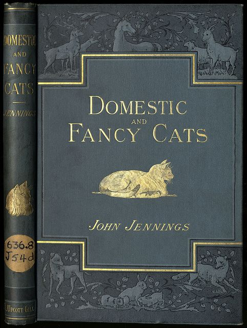 """""""Domestic and Fancy Cats: A Practical Treatise on Their Antiquity, Domestication, Varieties, Breeding, Management, and Diseases"""" by John Jennings; published in 1901 by L Upcott Gill - Front cover"""