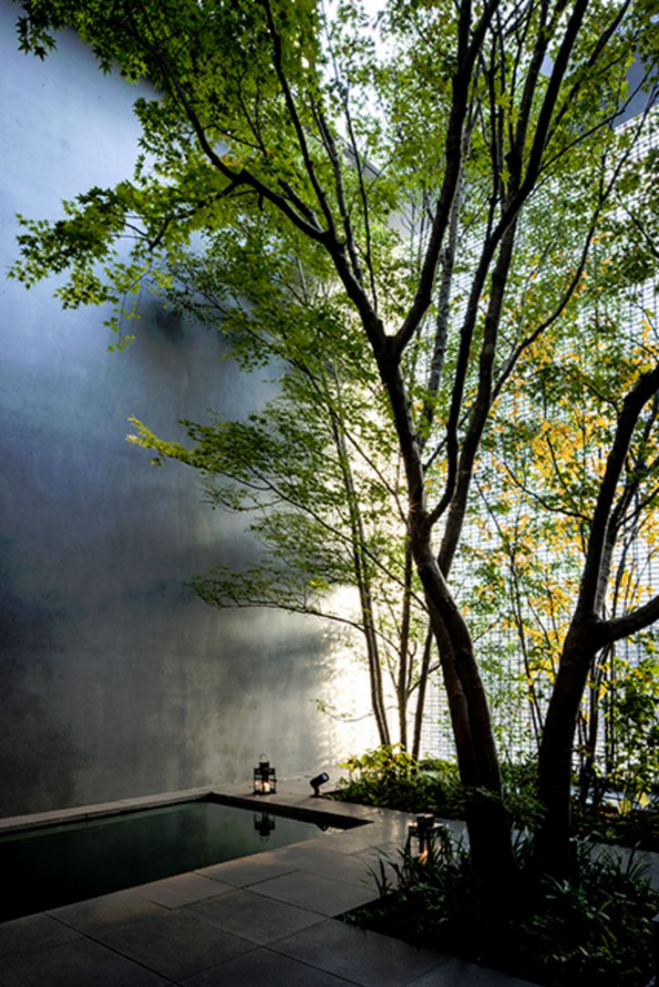 Optical Glass House By Nap Architects: 1151 Best Asian Gardens Images On Pinterest