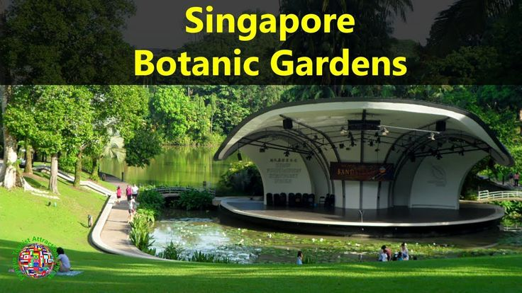 Best Tourist Attractions Places To Travel In Singapore | Singapore Botanic Gardens Destination Spot - WATCH VIDEO HERE -> http://singaporeonlinetop.info/travel/best-tourist-attractions-places-to-travel-in-singapore-singapore-botanic-gardens-destination-spot/     Top Tourist Attractions Places To Travel In Singapore | Singapore Botanic Gardens Destination Spot – Tourism in Singapore =========================================== Please SUBSCRIBE to update more interesting