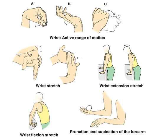 Wrist exercise for prolonged computer usage | Wrist ...
