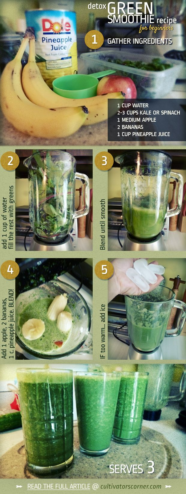 what do DO with that garden. Green Smoothies! Read the full article at http://cultivatorscorner.com/detox-smoothie-recipe-for-beginners-a-no-brainer