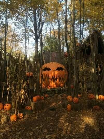 Halloween woods!