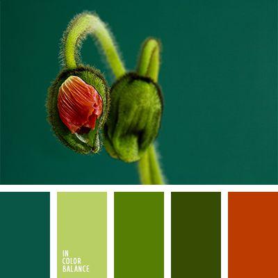 color de los tallos, color esmeralda, color verde amarillento, esmeralda y rojo, rojo apagado, rojo ladrillo, rojo oscuro, rojo y verde, rojo y verde lechuga, tonos verdes, verde azulado, verde fuerte, verde lechuga, verde lechuga y rojo, verde lechuga y verde, verde oscuro, verde y rojo.
