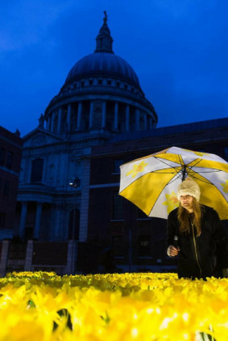 The Garden of Light features 2,100 daffodils, which represent the number of Marie Curie Nurses across the UK who provide care and support to people living with a terminal illness. The daffodils will light up at night, bringing a fresh spring glow to the grey financial district.