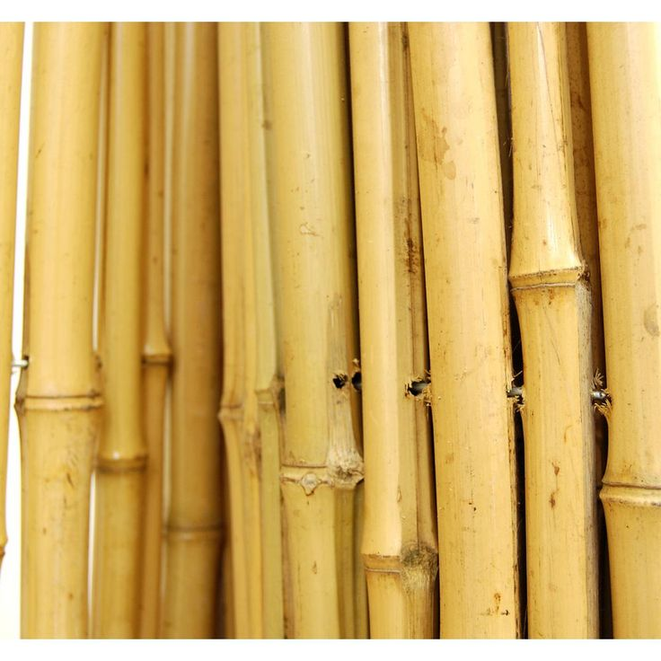 3/4 in. D x 3ft. H. x 8 ft. W Natural Bamboo FenceBAMA