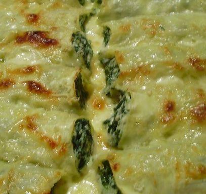 pasta ripiena di www.iopreparo.com agnolotti ricotta e spinaci con burro e salvia, salsa di noci e pinoli, con sugo di pomodori e basilico, cannelloni ripieni di ricotta e spinaci, lasagne al pesto, lasagne al pesto di broccoli, lasagne con ragù alla bolognese, rotolo di pasta agli spinaci, tortelli di castagne, tortelli mugellani.